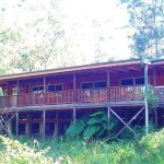 Sanctuary Bush to Beach House - Nambucca Heads holiday rentals - holiday lettings. Mid North Coast accommodation near Valla Beach