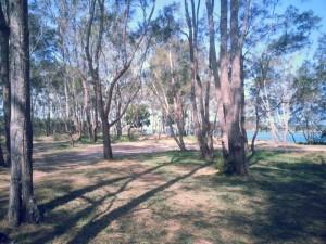 Nambucca Heads holiday rentals - holiday lettings. Mid North Coast accommodation near Valla Beach - Nambucca Heads Stuart Island Park on River